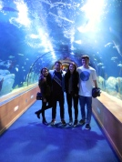 Sofia, Reed, Emily and Alden inside the aquarium - 2/22/15