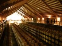 La Bodega/Wine Cellar at Hacienda Zorita - Salamanca 3/14/15