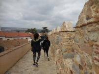 Wall at Ávila - 3/15/15