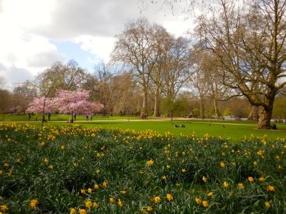St. James's Park - 3/31/15